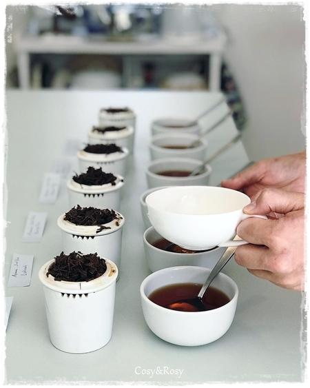 特別紅茶講習 産地紅茶飲み比べ応用編